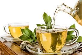 Elite Health Tip- Green Tea