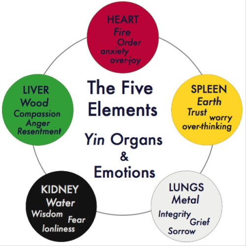 Elite Health Tip- Emotions and Health: Kidneys and Fear
