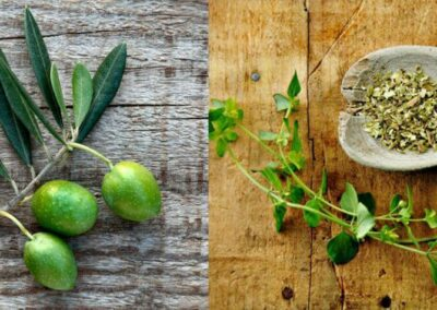 Oregano and Olive Leaf