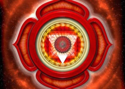 The Root Chakra and the Health of Your Energy Body!