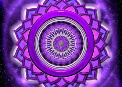 The Crown Chakra and the Health of Your Energy Body!