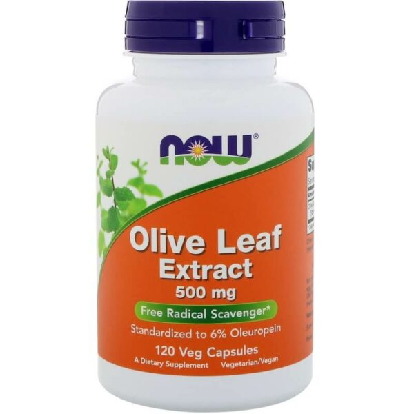 now olive leaf extract 500mg 120 capsules